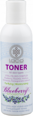 Purifying facial toner